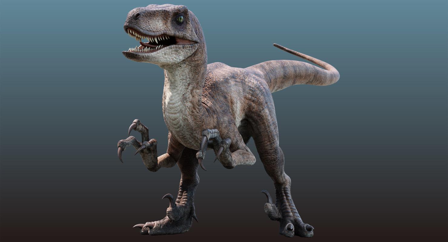 3D velociraptor animation raptor
