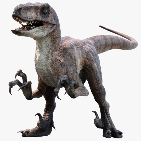 3D velociraptor animation raptor
