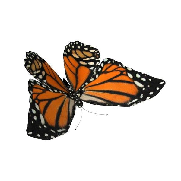 rig butterfly 3D model