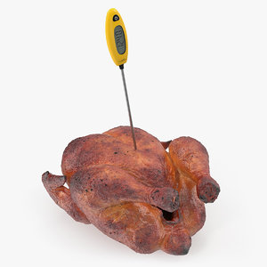 cooking thermometer roasted turkey 3D