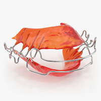 Dental Tooth Retainer