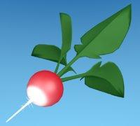 3D radishes gardening