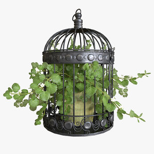3D ivy bird cage model