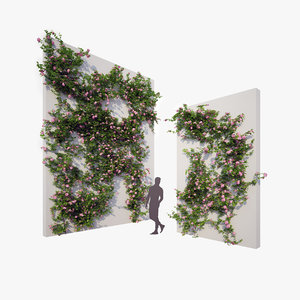 generic climbing blooming plants 3D