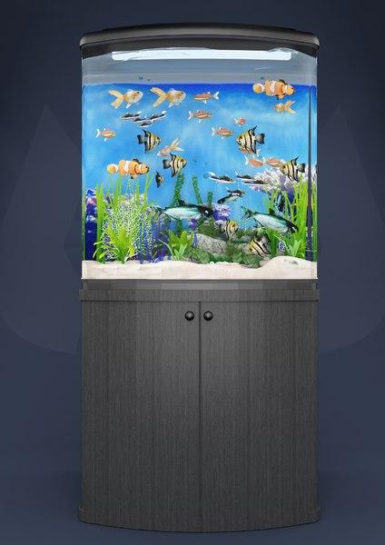 box aquarium 3D model