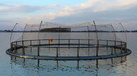 Fish farm open net