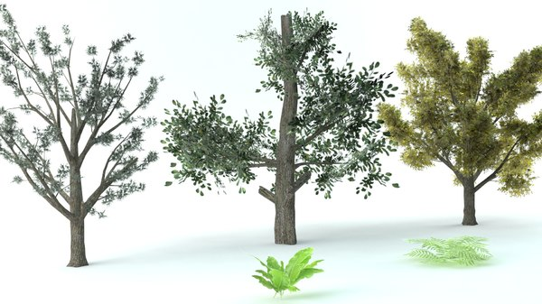 set vegetation 3D model