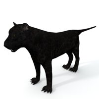 3D panther model
