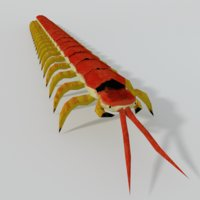 scolopendra model