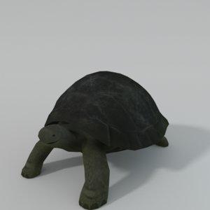 tortoise 3D model