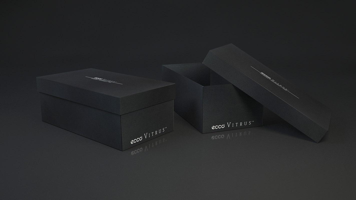 shoe box ecco 3D