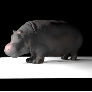 hippo modeled zbrush 3D model
