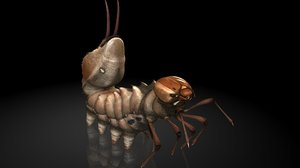 3D lobster moth insects