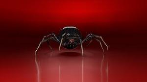 3D spider arnold