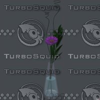 Gerbera daisy in vase