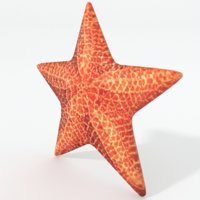 fish star starfish 3D