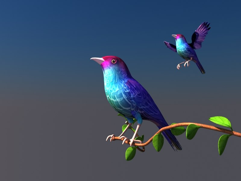 birds tree branch 3D model