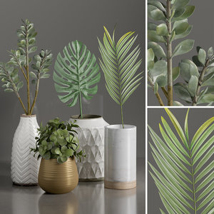 3D plants 1 model