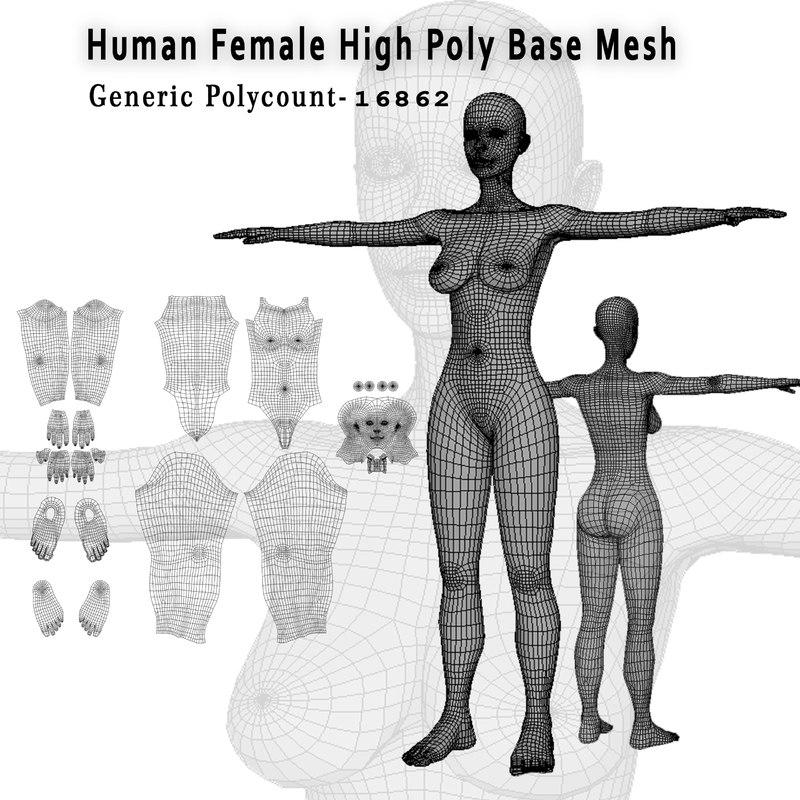 3D model female human base