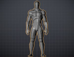 ideal proportions mans model