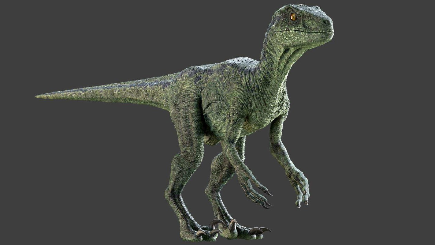 raptor rig studio license 3D