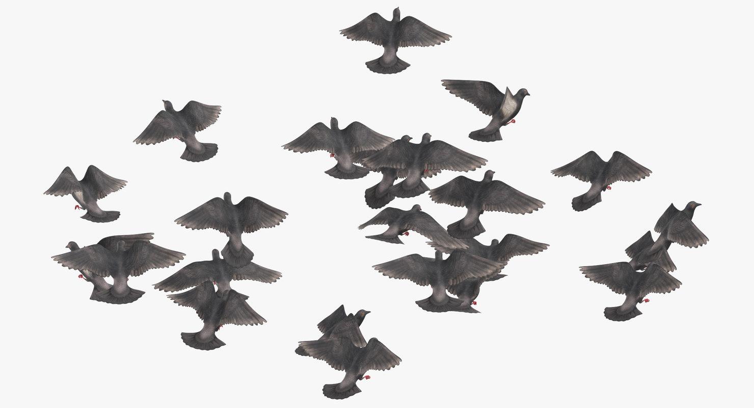 3D flock flying medium 01