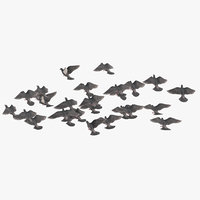 flock flying medium 02 3D