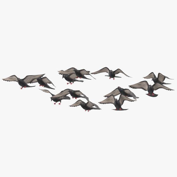 flock flying small 01 model