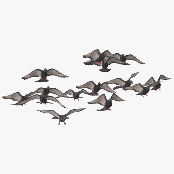 flock flying pigeons small 3D model