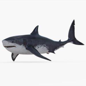 3D model rigged megalodon