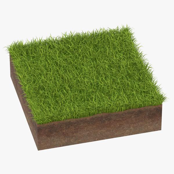 3D model grass cross section 01