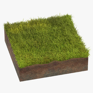 grass cross section 03 3D model