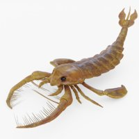 3D model rigged jaekelopterus sea scorpion