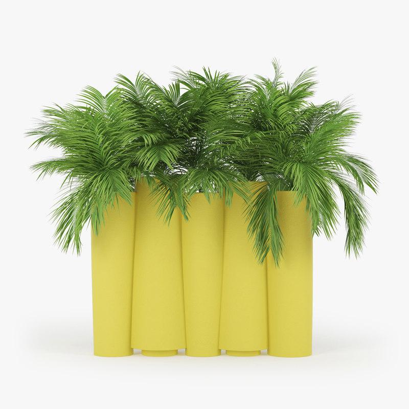 3D tropical palm model