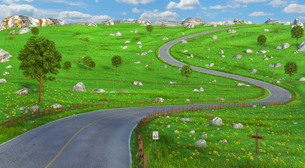 road cartoon toon 3D model