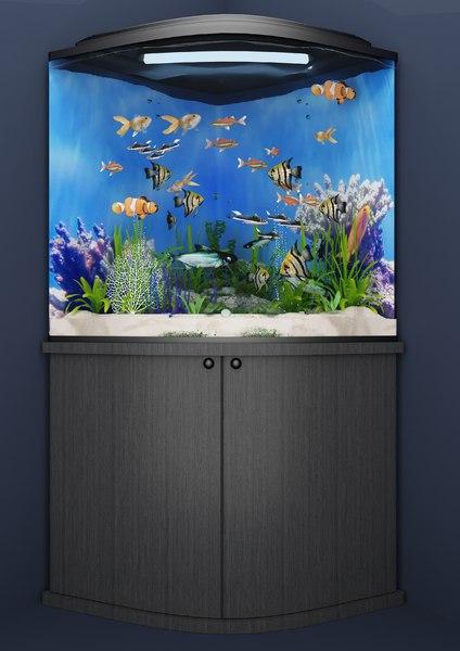 reef aquarium 3D model