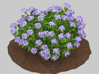 3D hydrangea flowers landscaping model