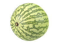 3D photorealistic scanned watermelon
