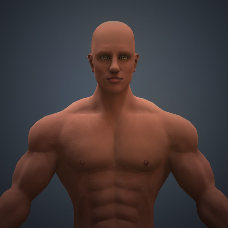 3D male body rig