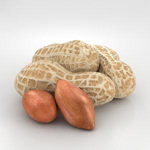 3D model peanuts nut