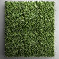 Vertical gardening Fern Wall 2