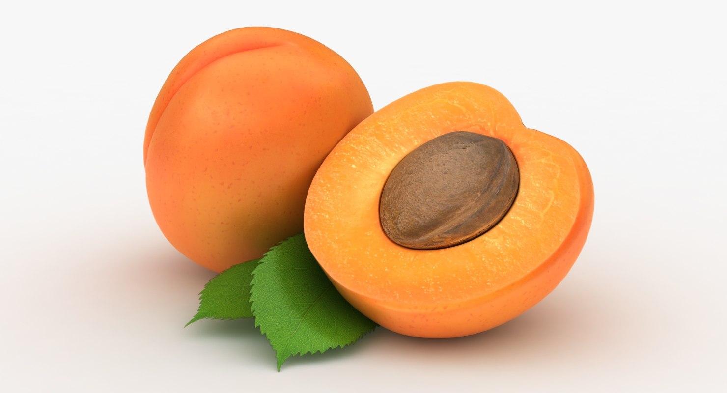fruit papaya lychee model