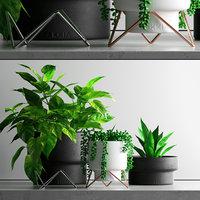 3D plant set 1