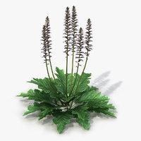 landscape flowers 3D model