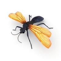 tarantula hawk wasp 3D model