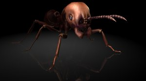 3D carnivorous ants insects