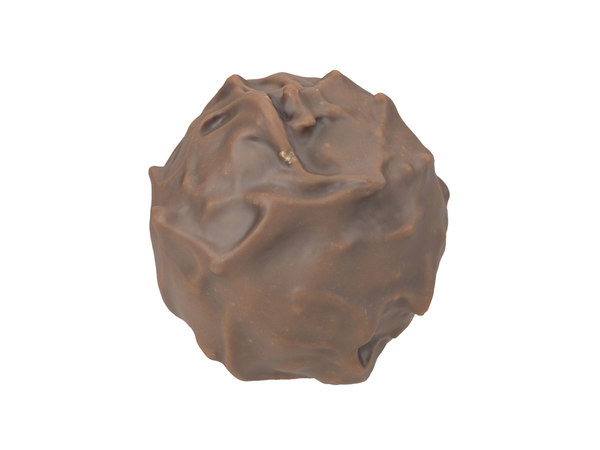 3D photorealistic scanned praline model