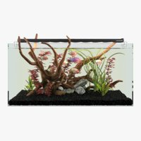 3D aquarium plants model