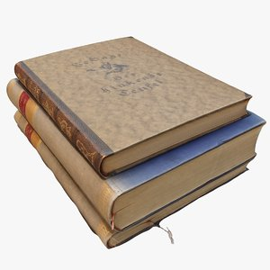 3D old books model