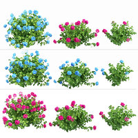 plants hydrangea set 03 3D model